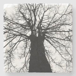 Schwarzweiss-Baum-Silhouette Steinuntersetzer