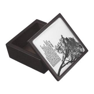 Schwarzweiss-Baum tun es irgendwie Schachtel