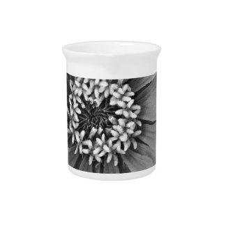 Schwarzweiss-Blumen-Foto Getränke Pitcher