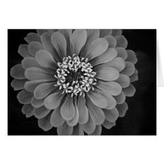 Schwarzweiss-Blumen-Foto Karte