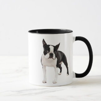 Schwarzweiss-Boston-Terrierschalen-Tasse Tasse