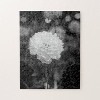 Schwarzweiss-Dahlie-Foto Puzzle