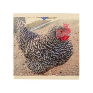 Schwarzweiss-Huhn Holzdruck