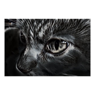Schwarzweiss-Katzen-Plakat Poster