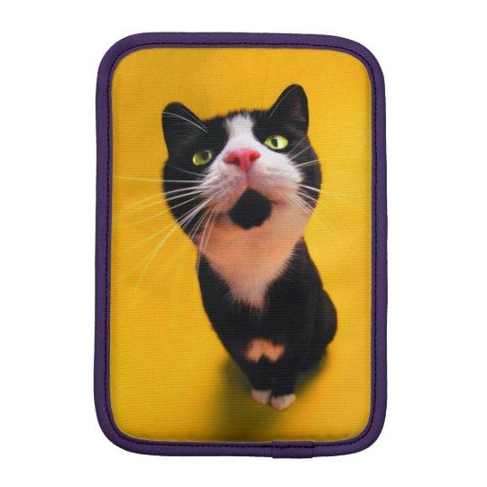 Schwarzweiss-KatzeSmoking Katzehaustier