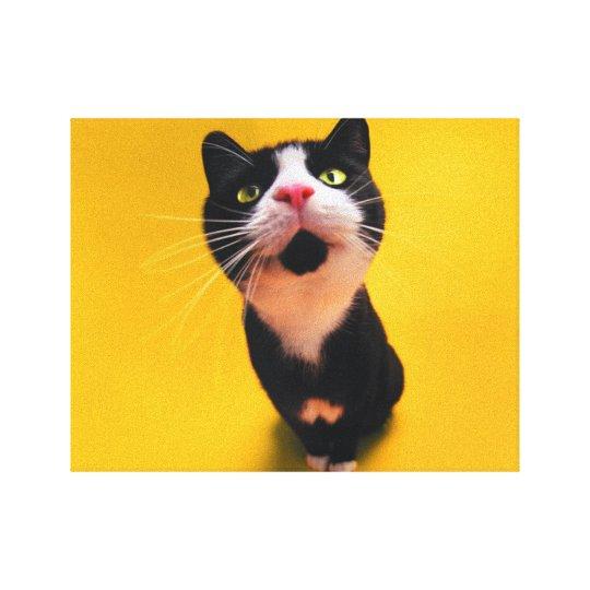 Schwarzweiss-KatzeSmoking Katzehaustier Leinwanddruck