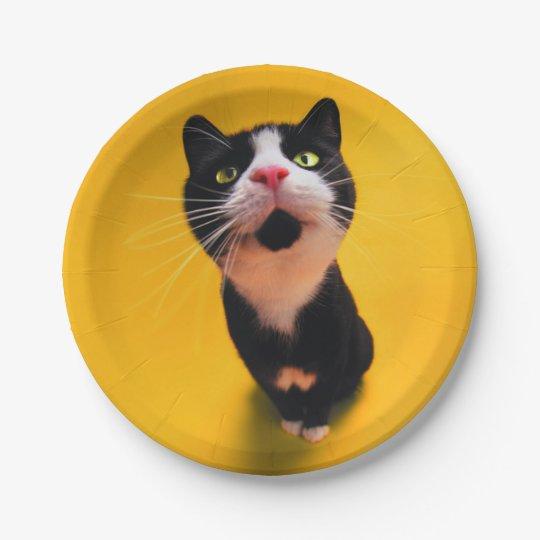 Schwarzweiss-KatzeSmoking Katzehaustier Pappteller