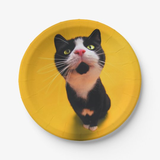 Schwarzweiss-KatzeSmoking Katzehaustier Pappteller 17,8 Cm