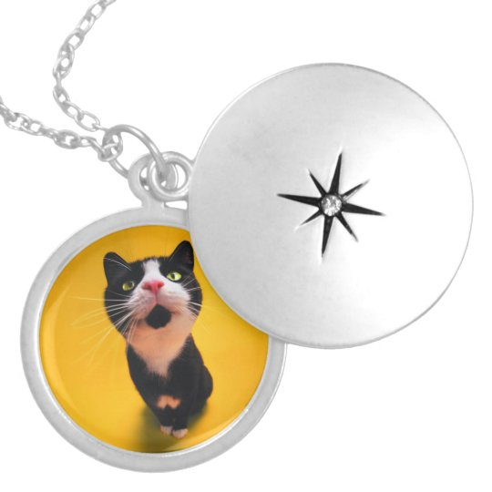 Schwarzweiss-KatzeSmoking Katzehaustier Runde Medaillon Halskette