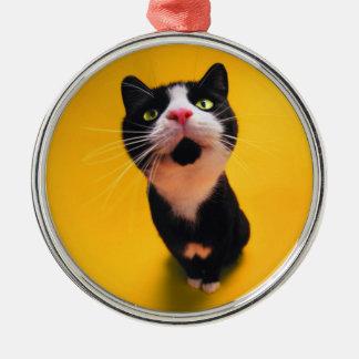Schwarzweiss-KatzeSmoking Katzehaustier Rundes Silberfarbenes Ornament
