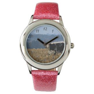 Schwarzweiss-Kuh lässt auf dem frisch gepflogenen Armbanduhr