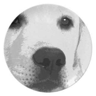Schwarzweiss-Labrador retriever Teller