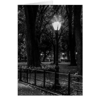 Schwarzweiss-LandschaftsFoto von Central Park Karte