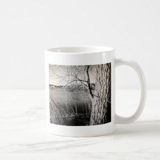 Schwarzweiss-Natur-Szene Kaffeetasse