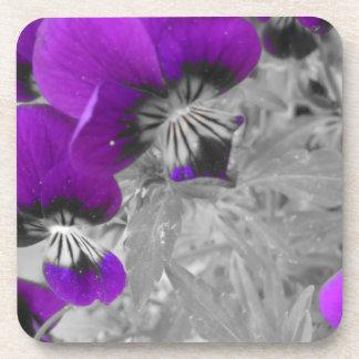 Schwarzweiss-Pansy-Effekt Untersetzer