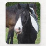 Schwarzweiss-Pferdeporträt Mousepad