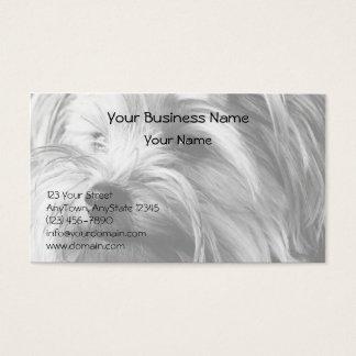Schwarzweiss-Porträt Yorkshires Terrier Yorkie Visitenkarte