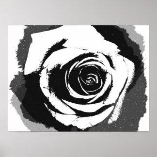 Schwarzweiss-Rosengraphik Poster
