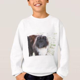 Schwarzweiss-Sheltie Sweatshirt