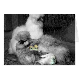 Schwarzweiss-Silkie Hühner mit gelben Küken Karte