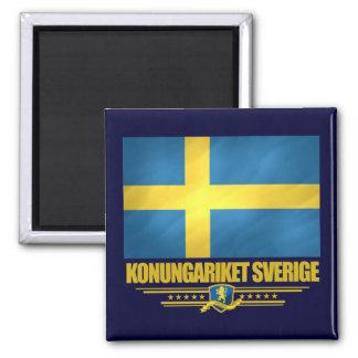 Schweden 2 quadratischer magnet