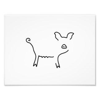 schwein ferkel sau fotodruck