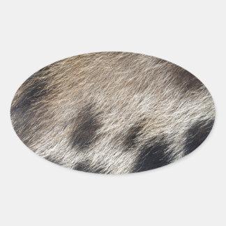 Schwein-Haut-Haar Ovaler Aufkleber