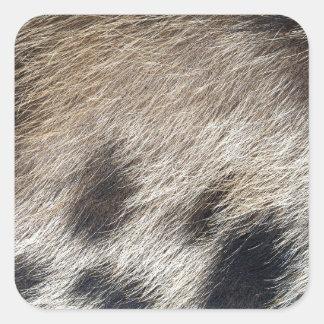 Schwein-Haut-Haar Quadratischer Aufkleber