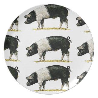 Schweine in Folge Teller