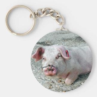 Schweinschlüsselring Schlüsselanhänger