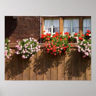 Schweizer Blumenkasten Poster