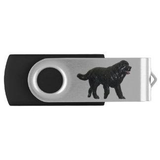 Schwenker USB-Blitz-Antrieb USB Stick