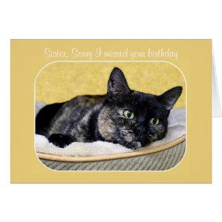 Schwester, verspätete Geburtstags-Schildpatt-Katze Karte