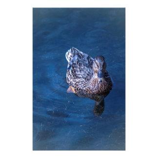 Schwimmen-Ente Briefpapier