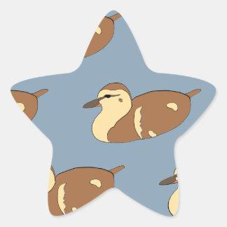 Schwimmen-Enten Stern-Aufkleber