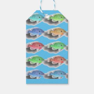 Schwimmen Fishies Geschenkanhänger