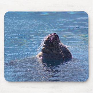 Schwimmen-Seelöwe Mousepad