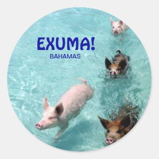 SchwimmenSalzwasser-Schweinaufkleber Runder Aufkleber