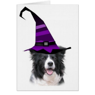 Schwindliger Dogz~Border Collie Karte
