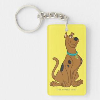 Scooby Doo   klassische Pose Beidseitiger Rechteckiger Acryl Schlüsselanhänger