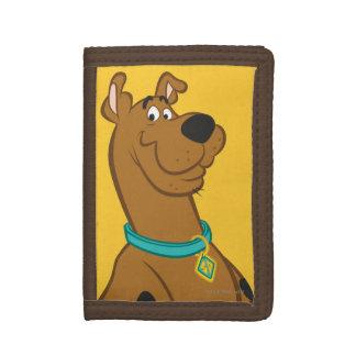 Scooby Doo niedlichere als niedliche Pose 15