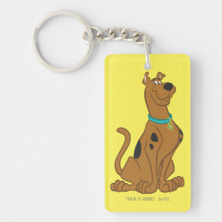 Scooby Doo niedlichere als niedliche Pose 15 Beidseitiger Rechteckiger Acryl Schlüsselanhänger