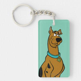 Scooby Doo Pose 27 Beidseitiger Rechteckiger Acryl Schlüsselanhänger