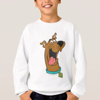 Scooby Doo Pose 49 Sweatshirt