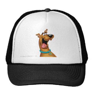 Scooby Doo Spritzpistolen-Pose 15 Kult Kappen