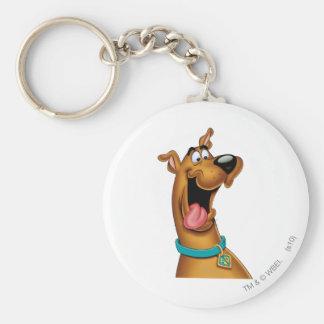 Scooby Doo Spritzpistolen-Pose 15 Standard Runder Schlüsselanhänger