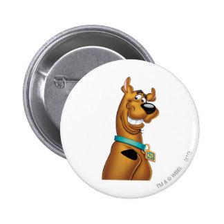 Scooby Doo Spritzpistolen-Pose 22 Anstecknadelbuttons