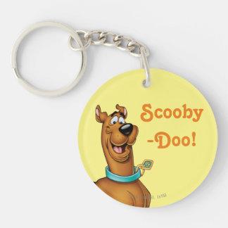 Scooby Doo Spritzpistolen-Pose 3 Beidseitiger Runder Acryl Schlüsselanhänger