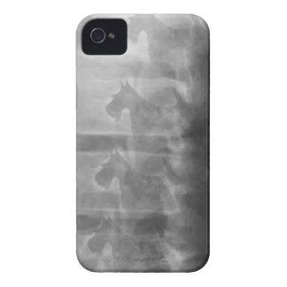 Scottiehundesyndrom iPhone 4 Hüllen