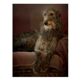 Scottish deerhound man hat Sofa Postkarte